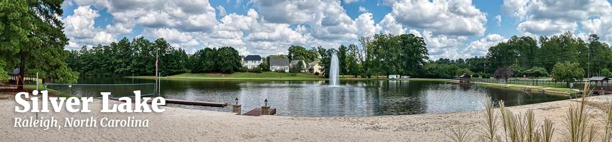 Silver Lake Community